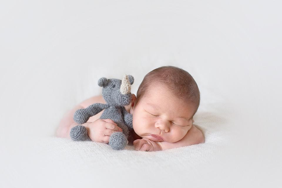 photographe-bebe-bourges-doudou-basile-et-capucine