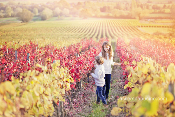 photographe-tours-enfant-vignes-basile-et-capucine
